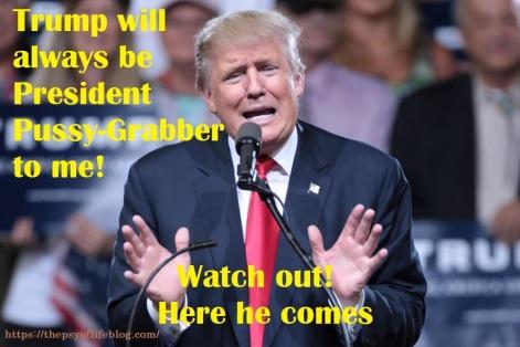 presidentpussygrabber
