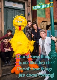 bigbird1ofthesethings