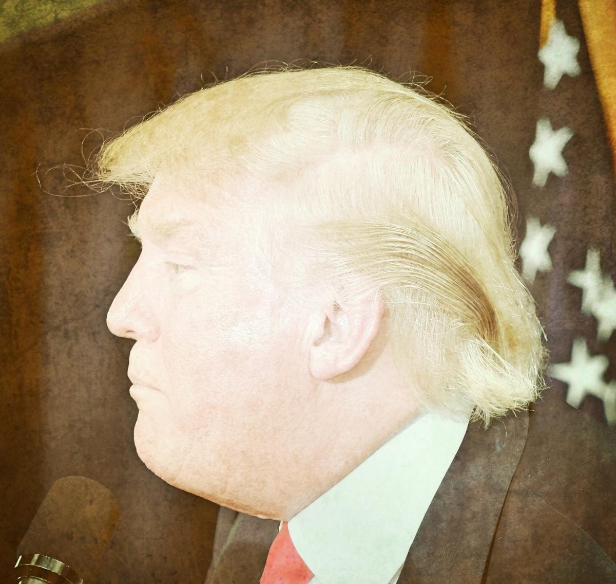 Snarky, Sarcasticky, Profaney Thoughts: Defining the United Fucking States of Fucking Stupid